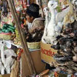 witch-market-la-paz-bolivia-horizontal-gallery